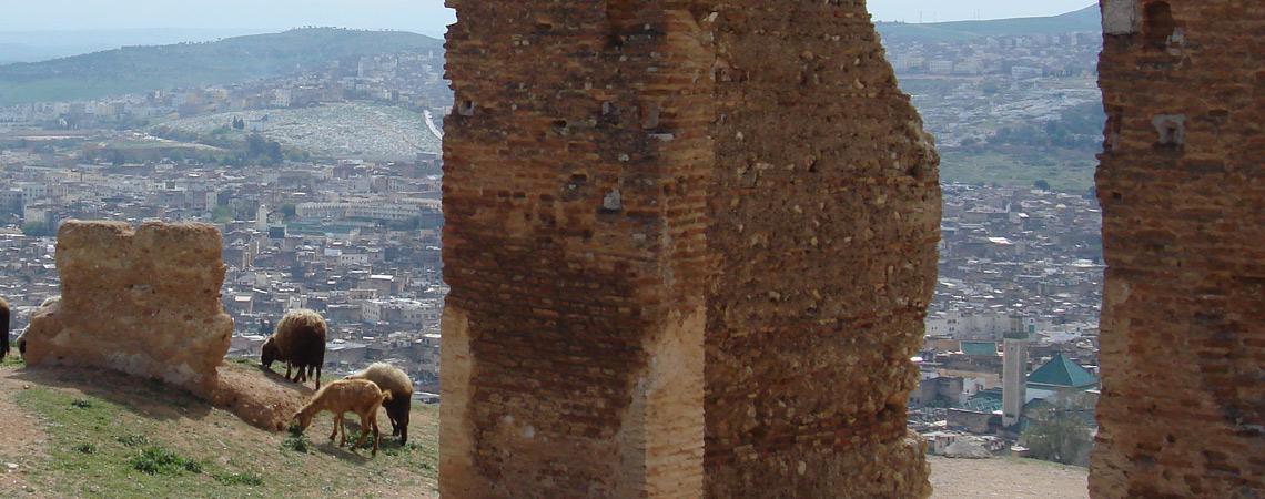 Above Fez